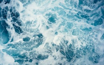 Water Stewardship 101: The Basics